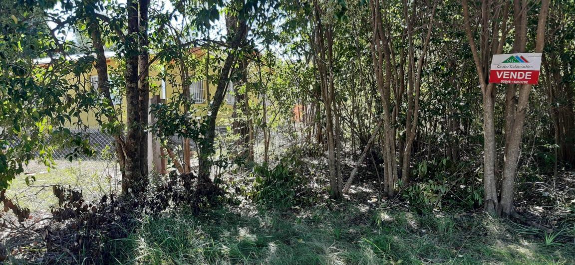 lote-villa-del-parque-calamuchita